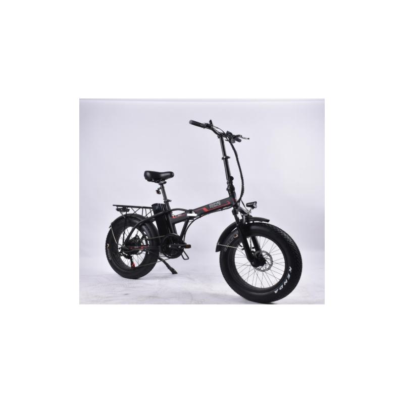 Bici Elettrica Fat Bike 20'' 250W